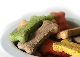 close up on colorful dog treats.
